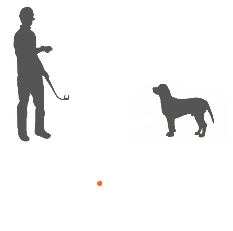 Man and Dog 2