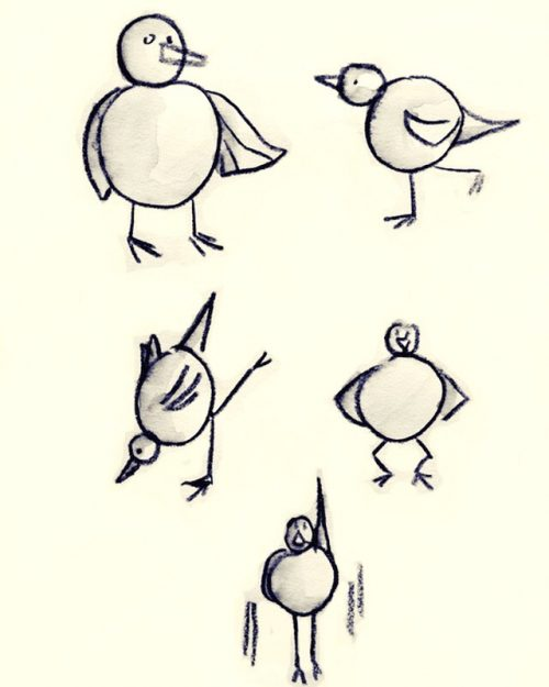 Bird Workout by Alison Garwood-Jones