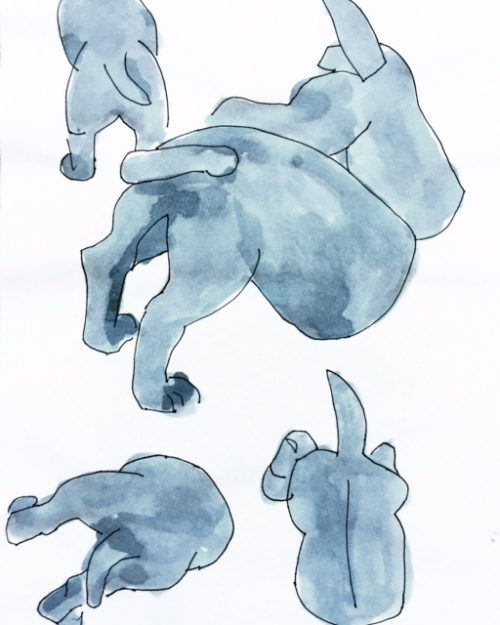 Digging dog drawing by Alison Garwood-Jones