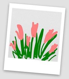 Flower Power polaroid