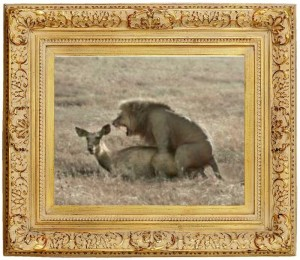 Lion over Gazelle
