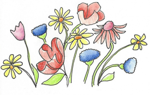 Wildflowers PNG