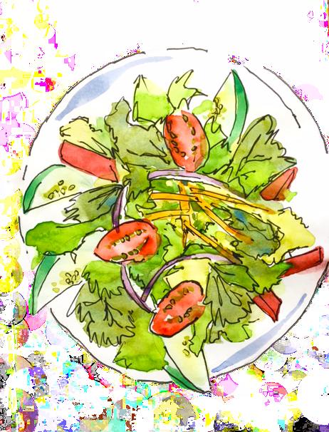 Traveller's Salad Sketch by Alison Garwood-Jones