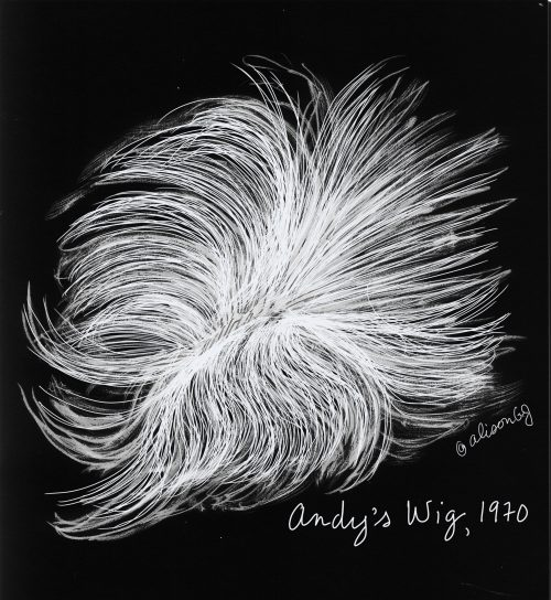 Andy Warhol's Wig, 1970