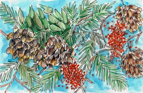 Pinecones and Berries Painting by Alison Garwood-Jones