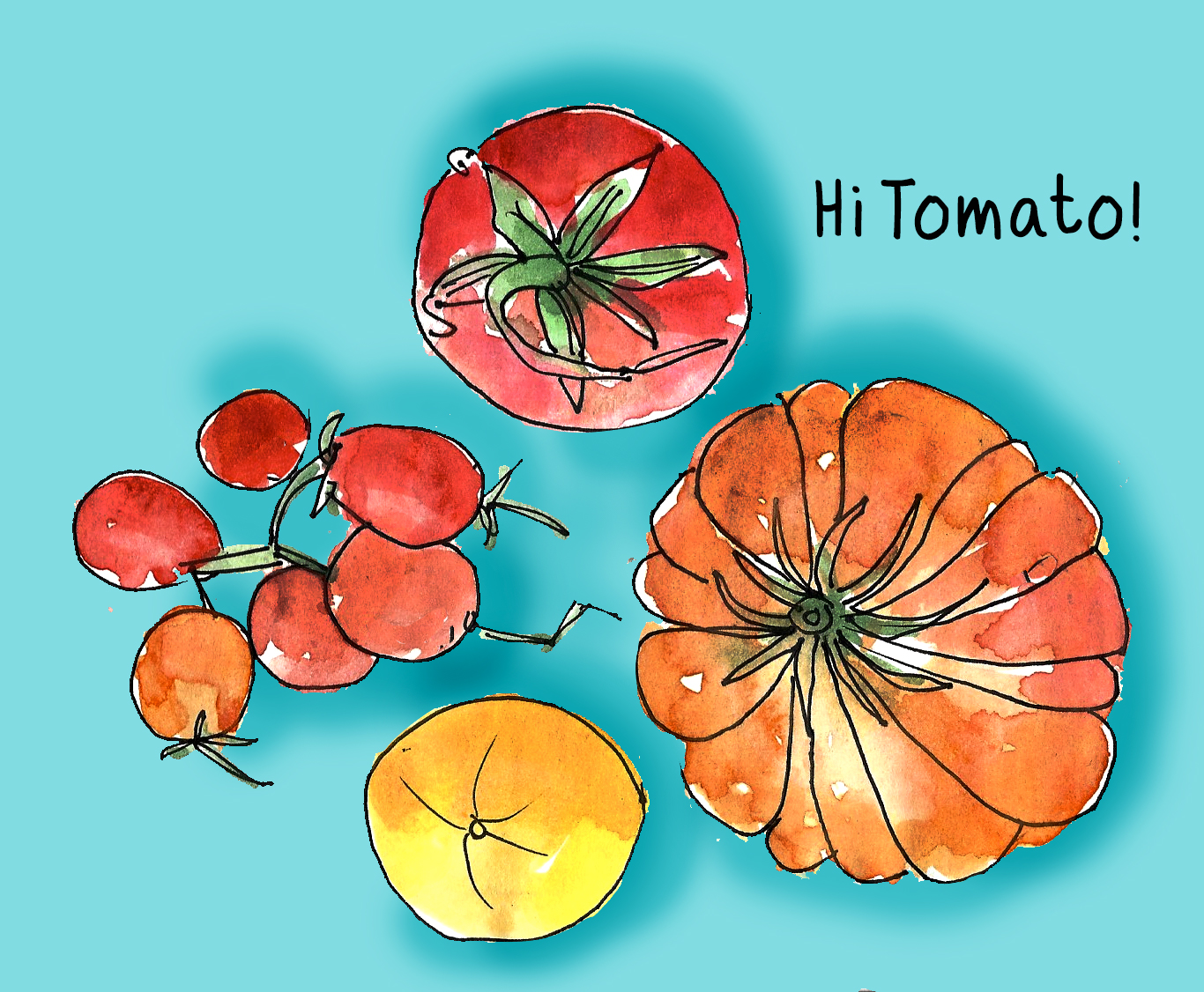 Tomatoes by Alison Garwood-Jones