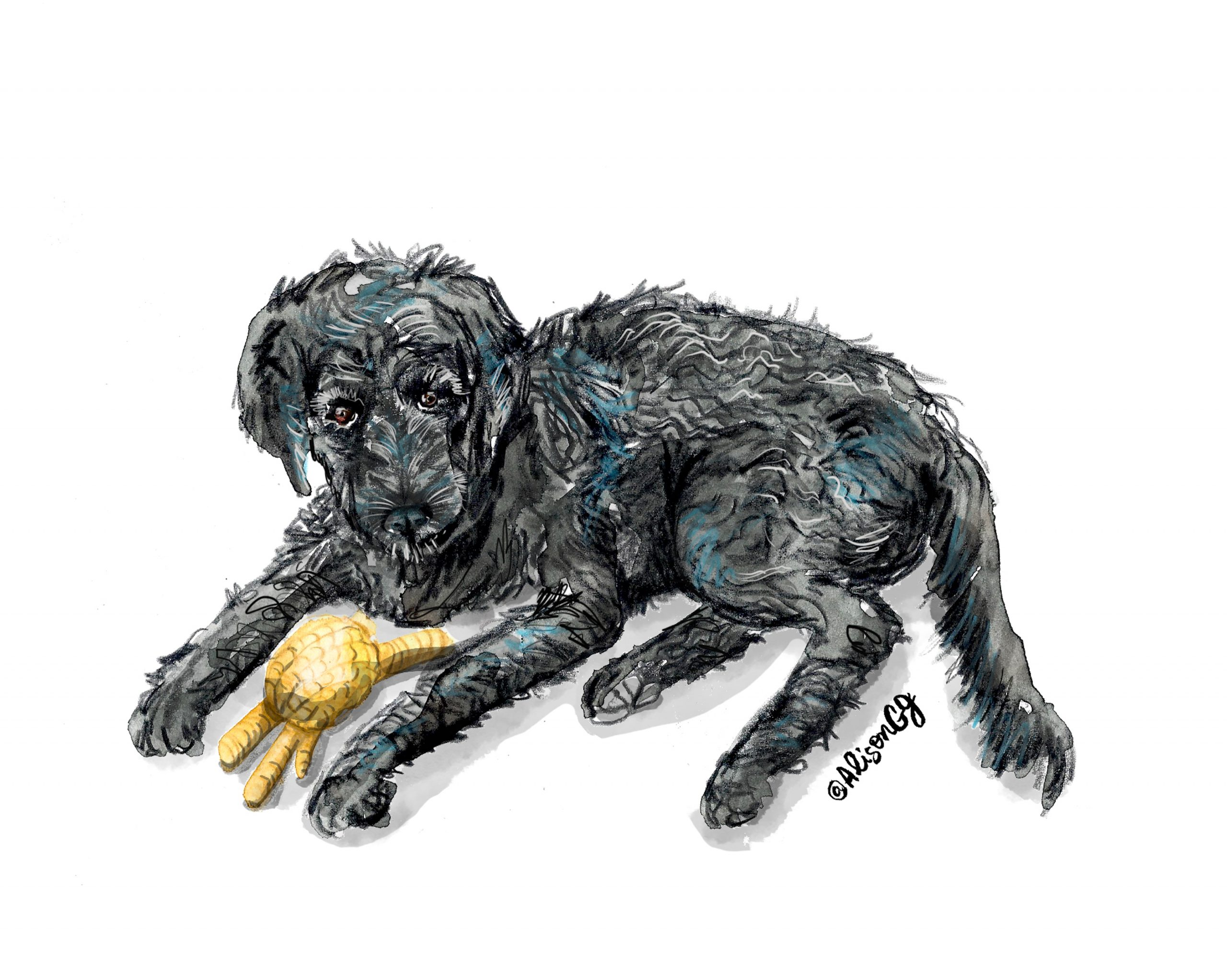 Dog portrait by Alison Garwood-Jones