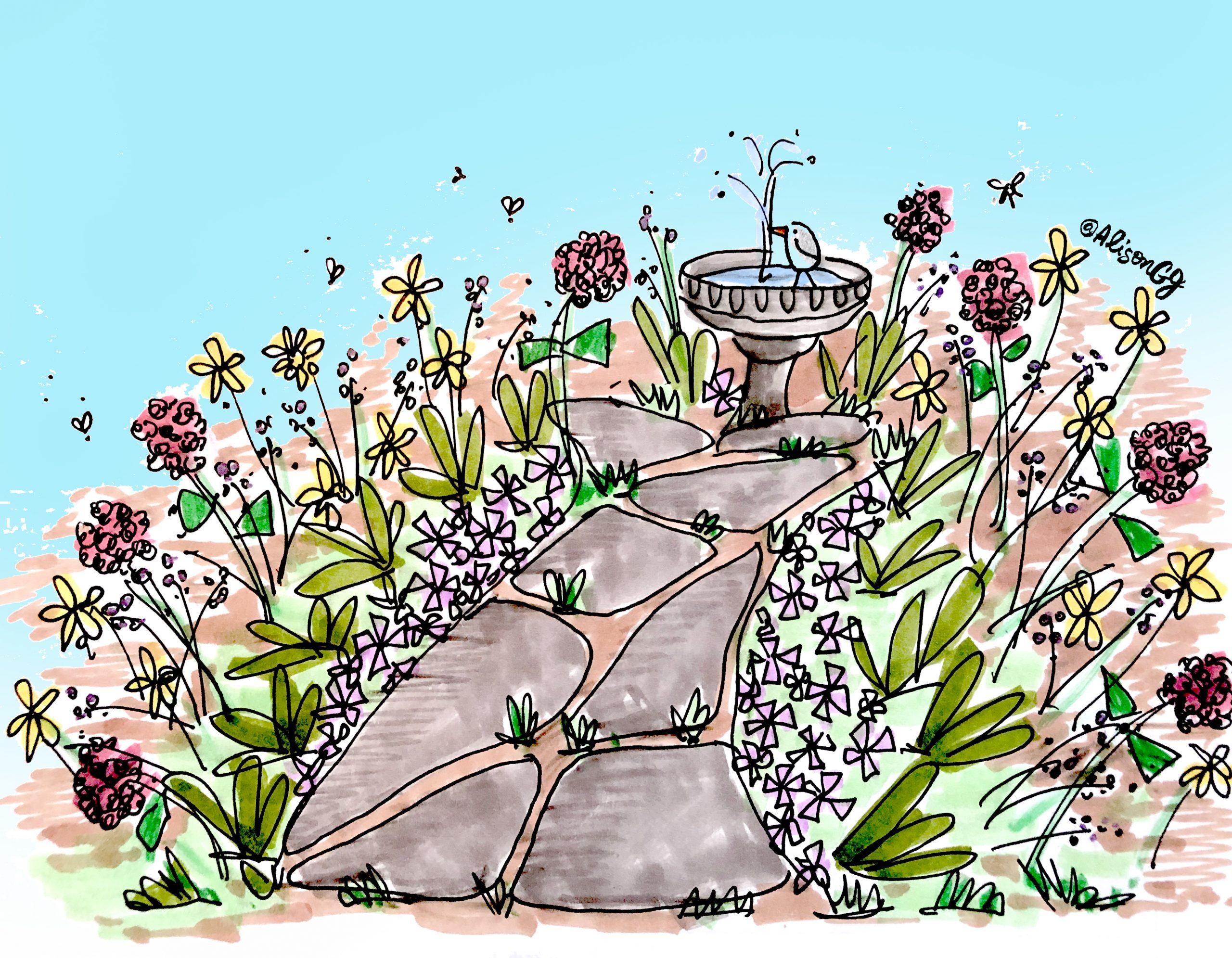 Nature Sketch By Alison Garwood-Jones